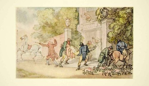 Fox Hunting, A Treatise by the Right Honorable Earl of Kilreynard Now Compiled and Illustrated by C. W. BELL.